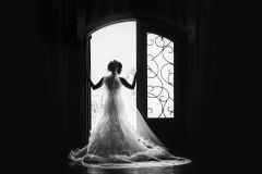Gorgeous Bridal silhouette, San Antonio Wedding Photographer