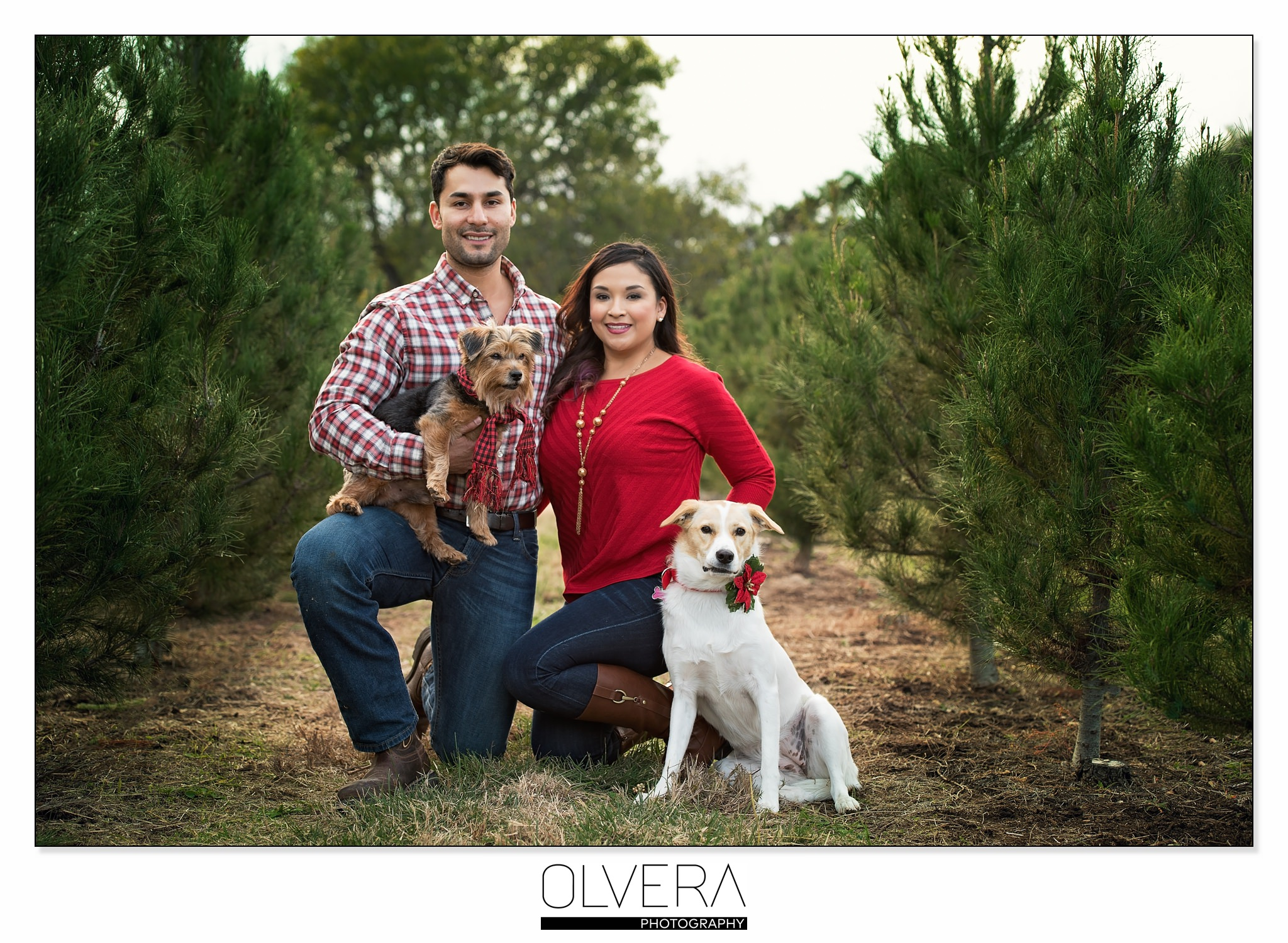 Couples Portrait Session_San Antonio TX_Holiday Christmas Tree Farm 1