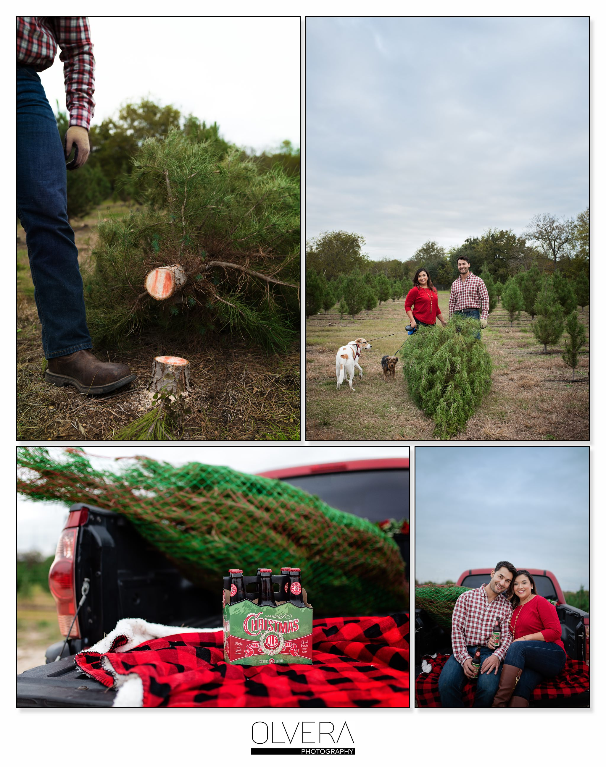 Pipe Creek Christmas Tree Farm