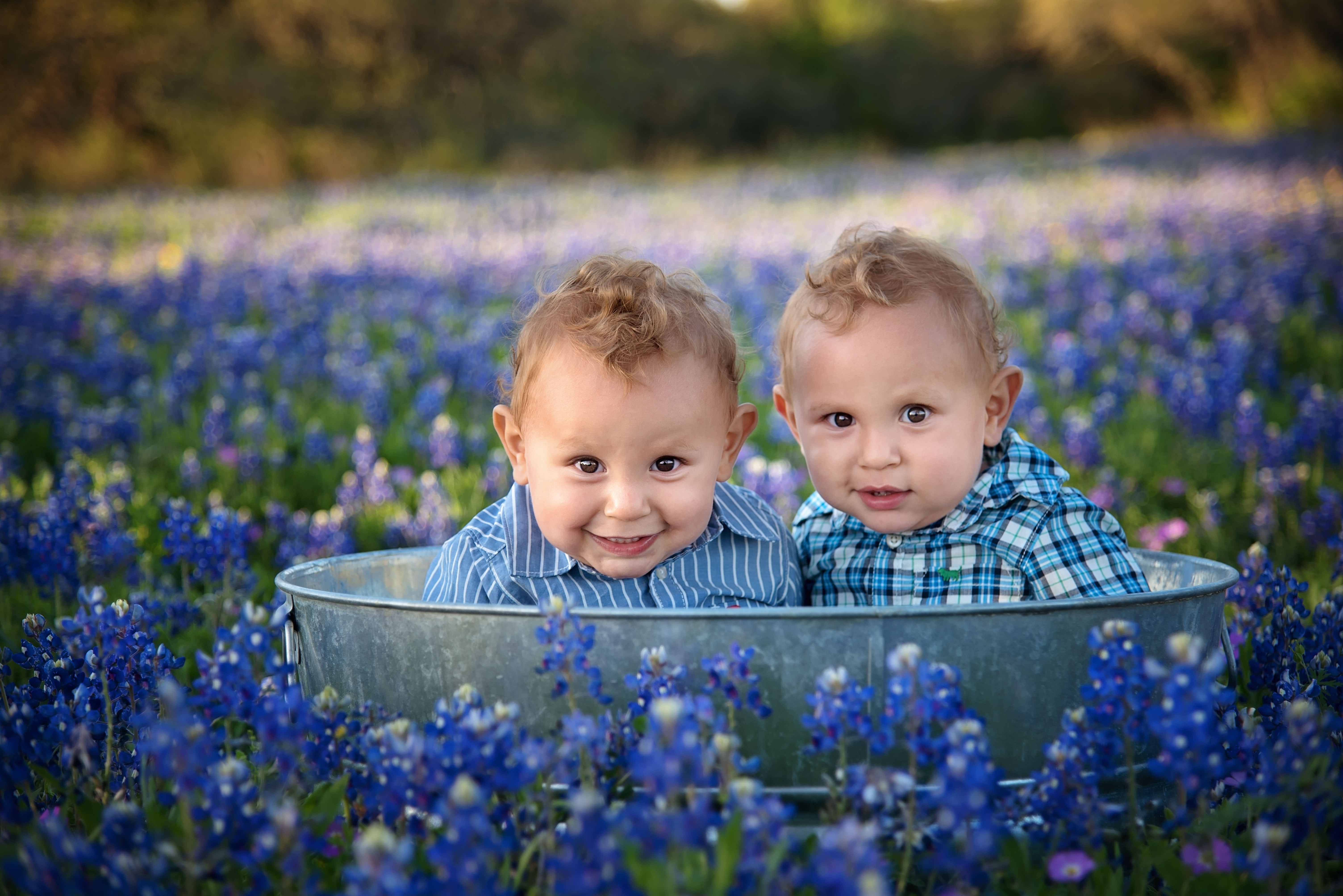 10 tips and tricks to taking amazing bluebonnet portraits|San Antonio photographer